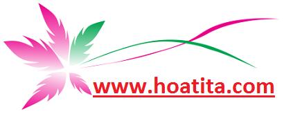 hoatita