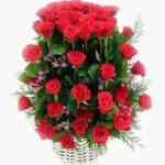 Hoa sinh nhật 1041
