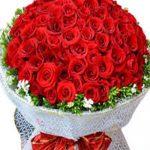 hoa bó 1032