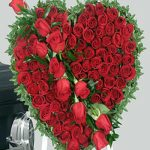 hoa trái tim 1039