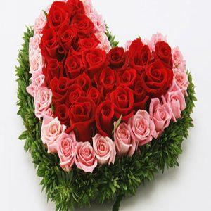 hoa trái tim 1040