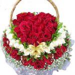 hoa trái tim 1023
