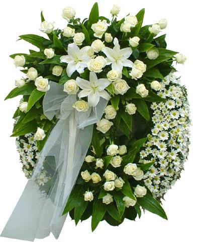 Shop hoa tươi Hoài Nhơn Bình Định