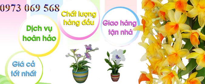 Shop hoa tươi tại Tân Thành